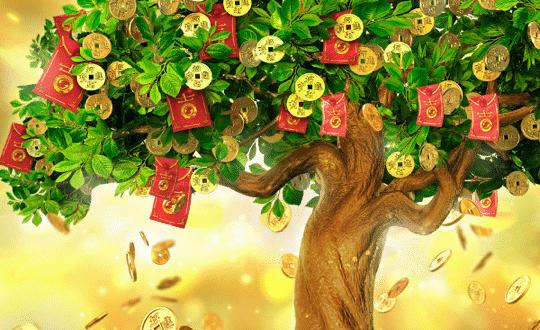 สล็อตต้นไม้แห่งโชค Tree of Fortune ล่าโบนัสแห่งโชคลาภบน SBOBET